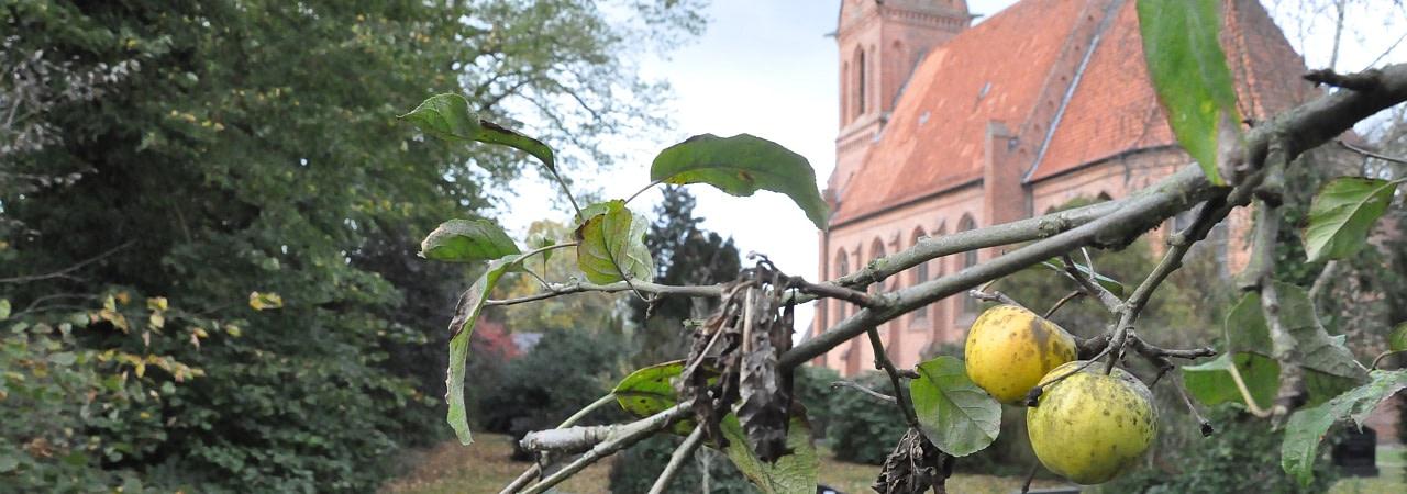Ev.-luth. Kirchengemeinde Ramelsloh